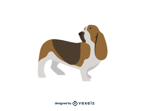 Basset Hound Dog Flat Cartoon Breed