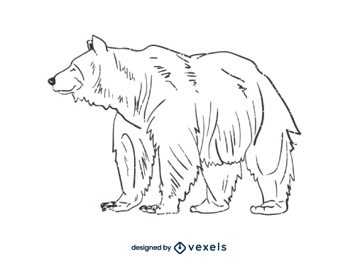 Bear Outline Line Art Black And White