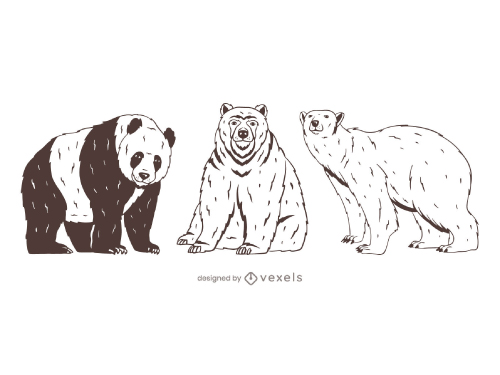 Panda Grizzly Polar Bear Drawing