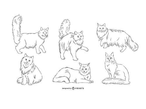 Cat Maine Coon Outline Hand Drawn Set