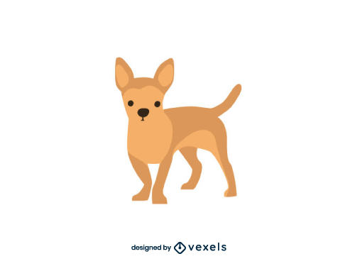 Chihuahua Dog Flat Cartoon Breed