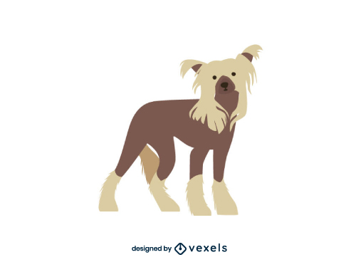 Chinese Crested Dog Flat Cartoon Breed