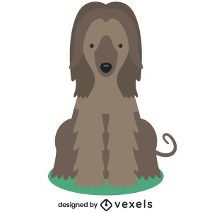 afghan hound ,puppy,breed,dog,cute,flat,pet,animal,purebred,puppies,dog breeds