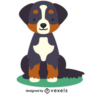 bernese mountain,puppy,breed,dog,cute,flat,pet,animal,purebred,puppies,dog breeds