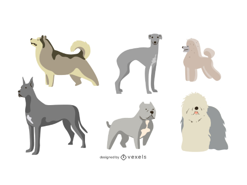 Cute Dog Breeds Pack Illustration