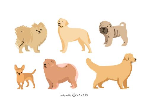 Dogs Set Various Breeds Flat
