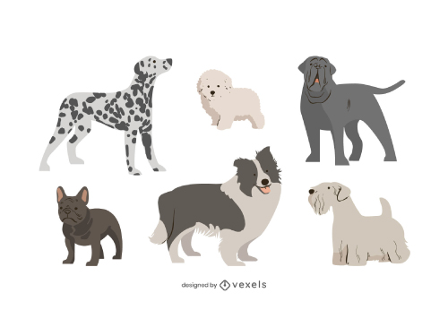Dogs Purebred Flat Drawing Set