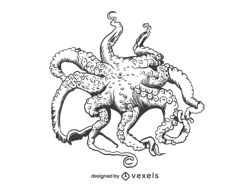 Hand Drawn Octopus Seafood