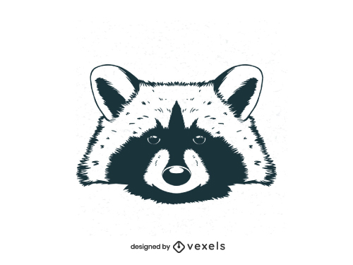 Hand Drawn Raccoon Head