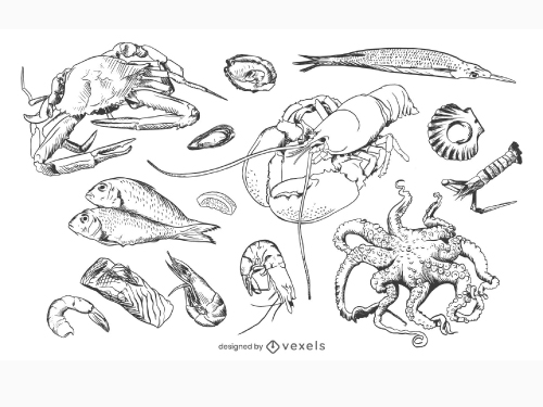 Hand Drawn Seafood Marine Food Pack