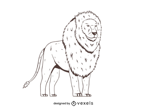 Lion Hand Drawn Wild Animal