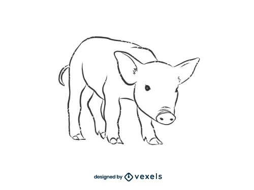 Pig drawing outline