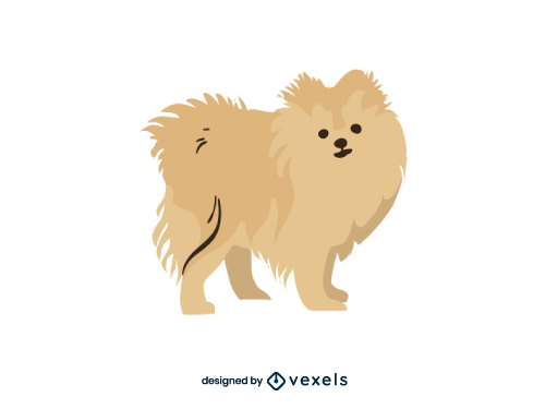Pomeranian Dog Flat Cartoon Breed
