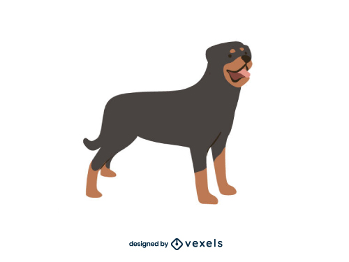 Rottweiler Breed Dog Illustration