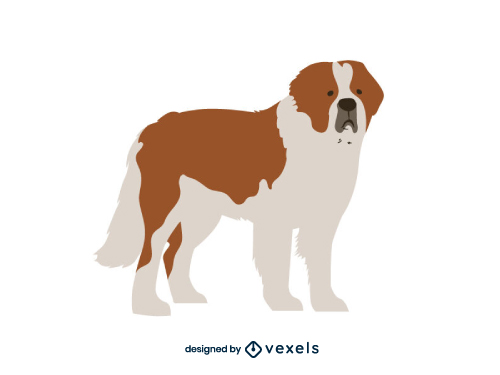 Saint bernard Dog Flat Cartoon Breed