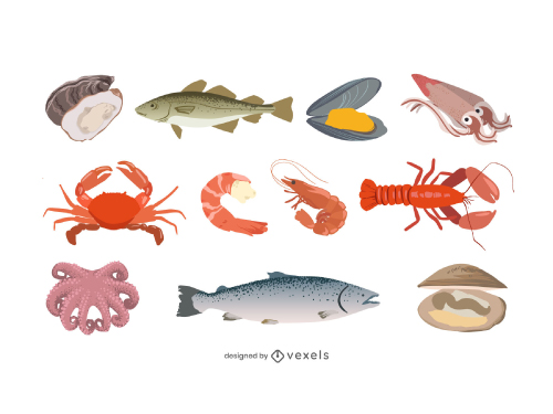 Shellfish Animal Seafood Pack